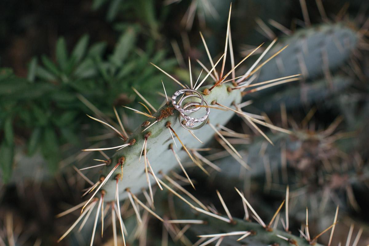 uc-davis-arboretum-engagement-photos-6.jpg