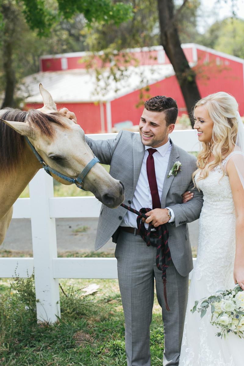 gold-hill-gardens-wedding-photographer-lixxim-12.jpg