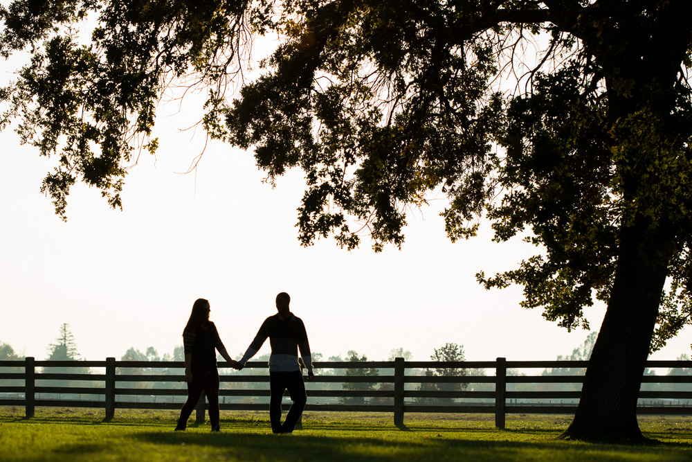 Engagement photos at Gibson Ranch.jpg