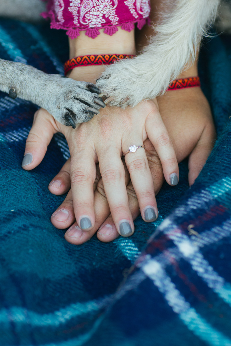 uc-davis-engagement-session-dog-photographer-15.jpg