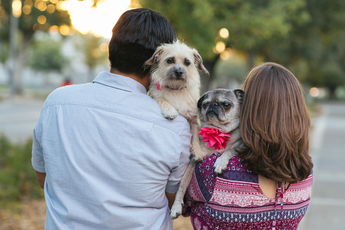 uc-davis-engagement-session-dog-photographer-17.jpg
