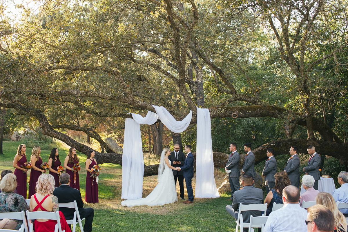 gold-hill-gardens-wedding-photographer-lixxim-62.jpg