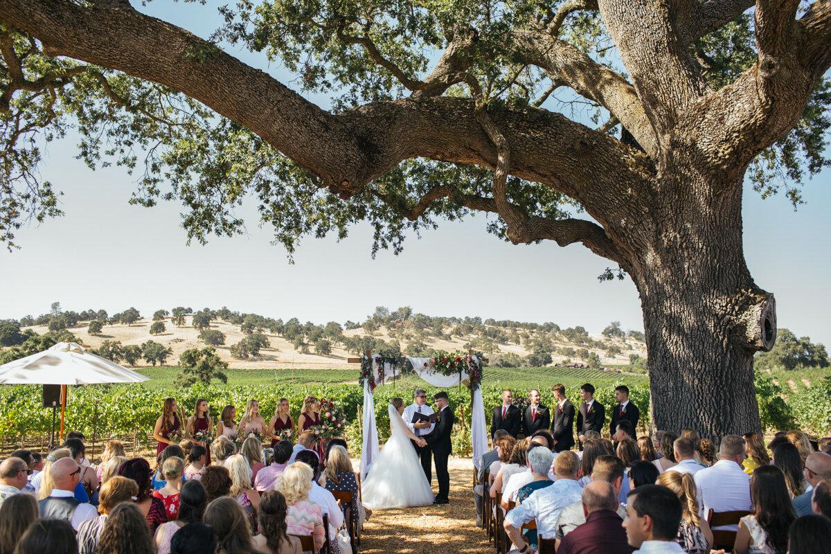 rancho-victoria-vineyard-wedding-photos-35.jpg