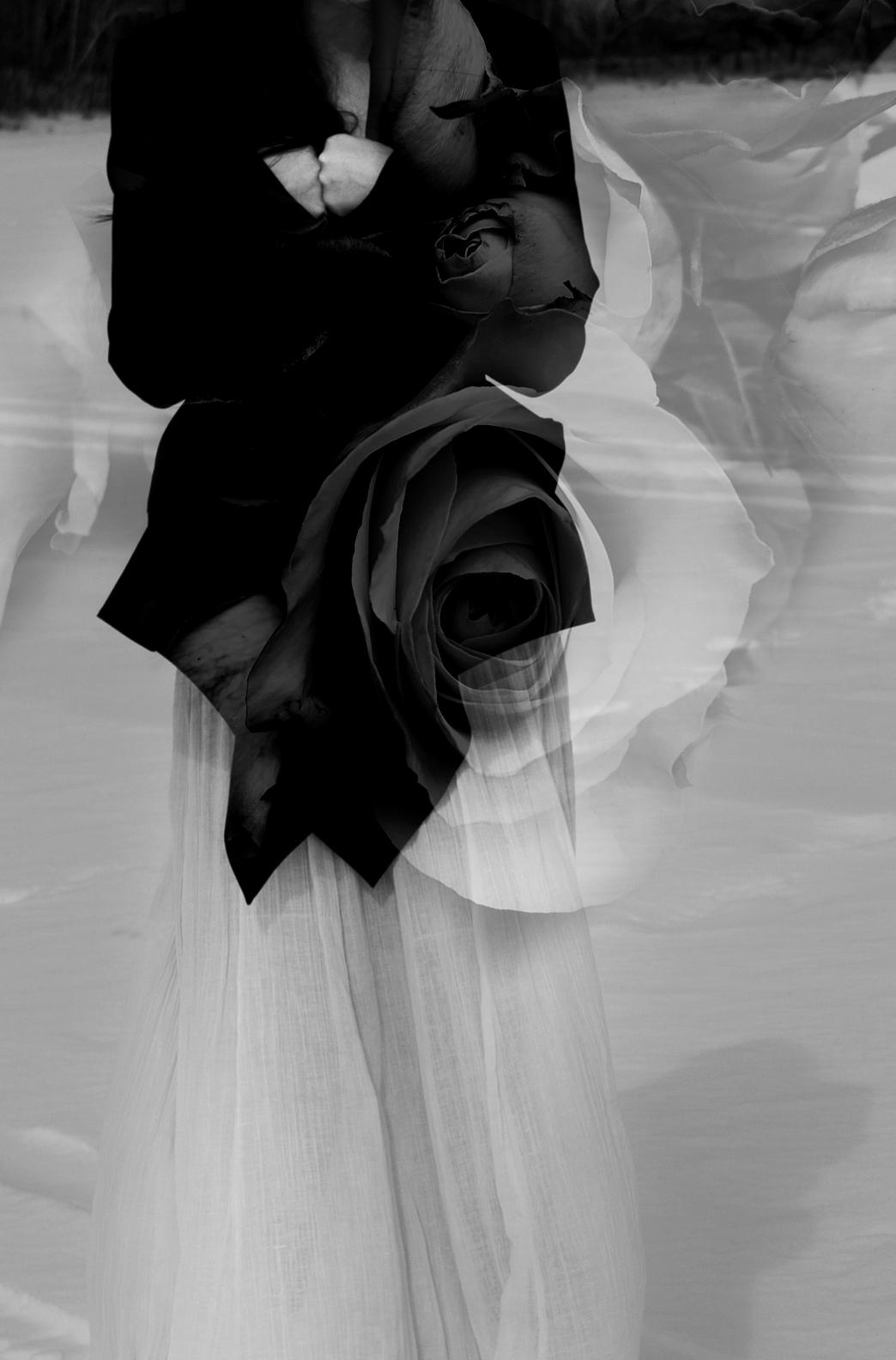 Rose_Overlay_rock and roll_wedding_photography_salt lake city_photographer_offbeat wedding_ unique