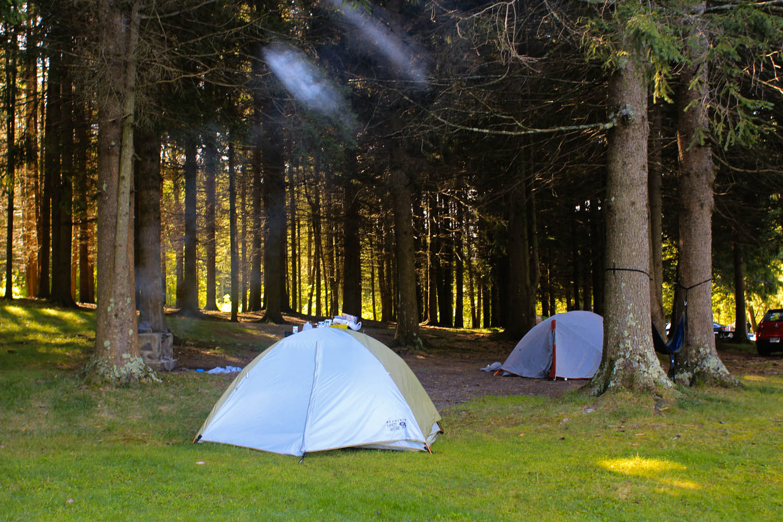 Camp Site #19