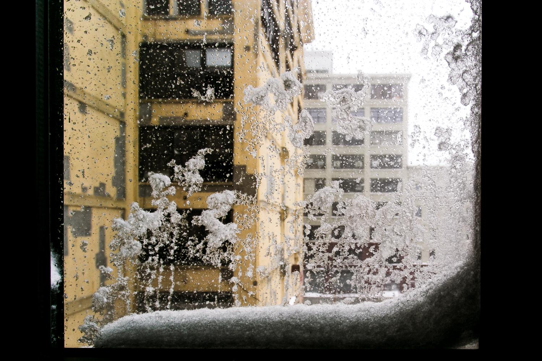 brodo_blizzard_160123_001.jpg
