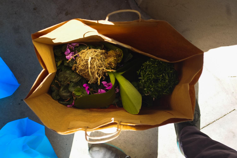 brodo_flower-market_160312_009.jpg