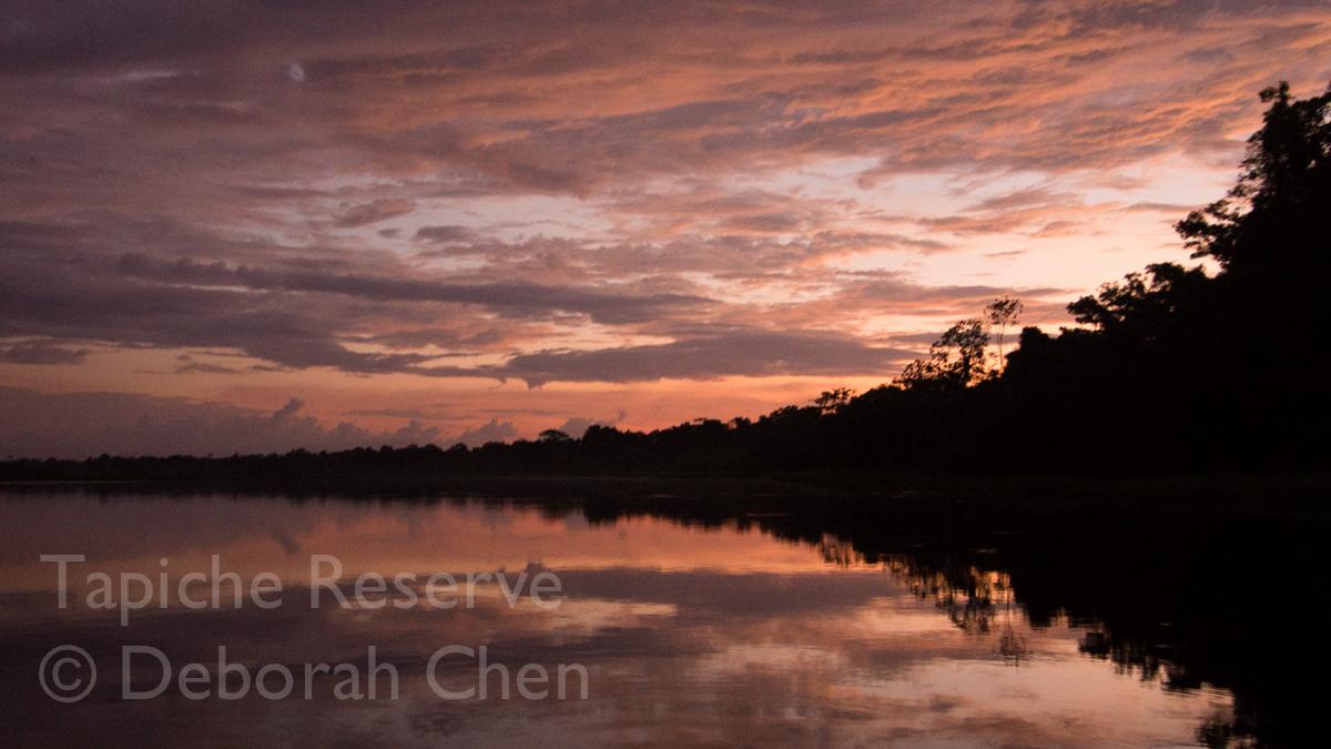 Sunset at the Tapiche Reserve, Peru