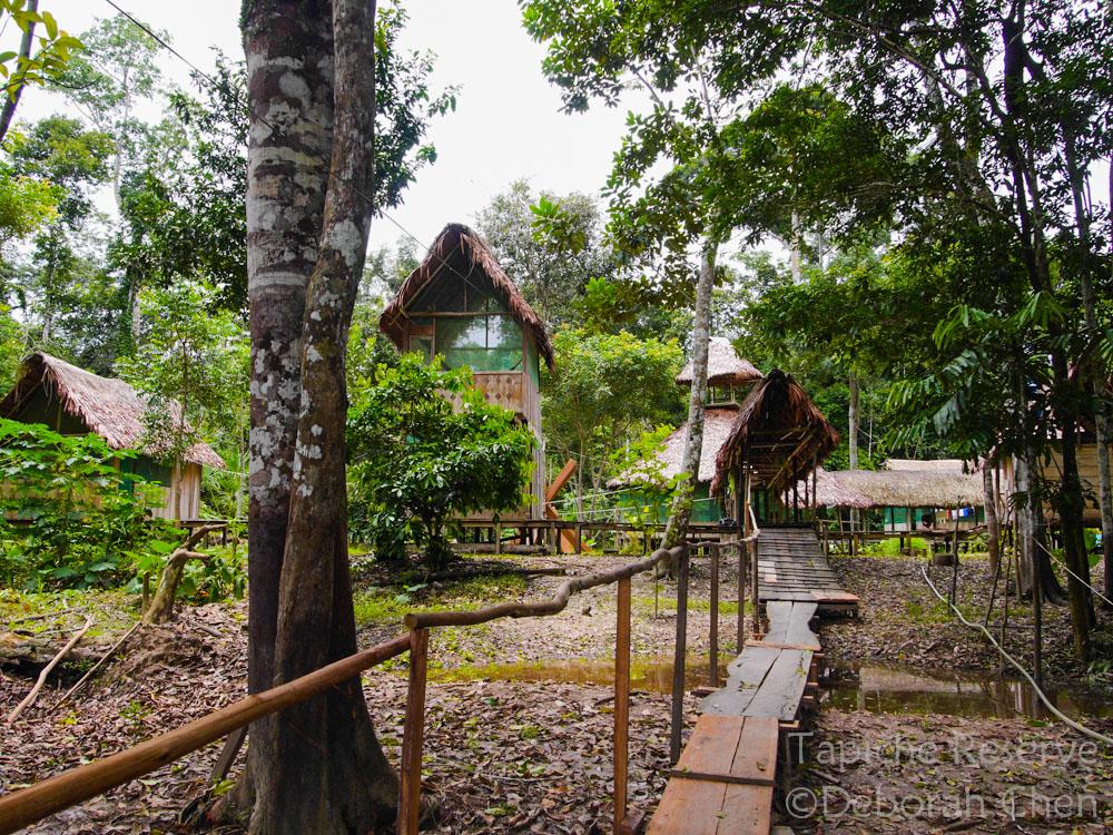 The Lodge at Tapiche Jungle Reserve, Peru