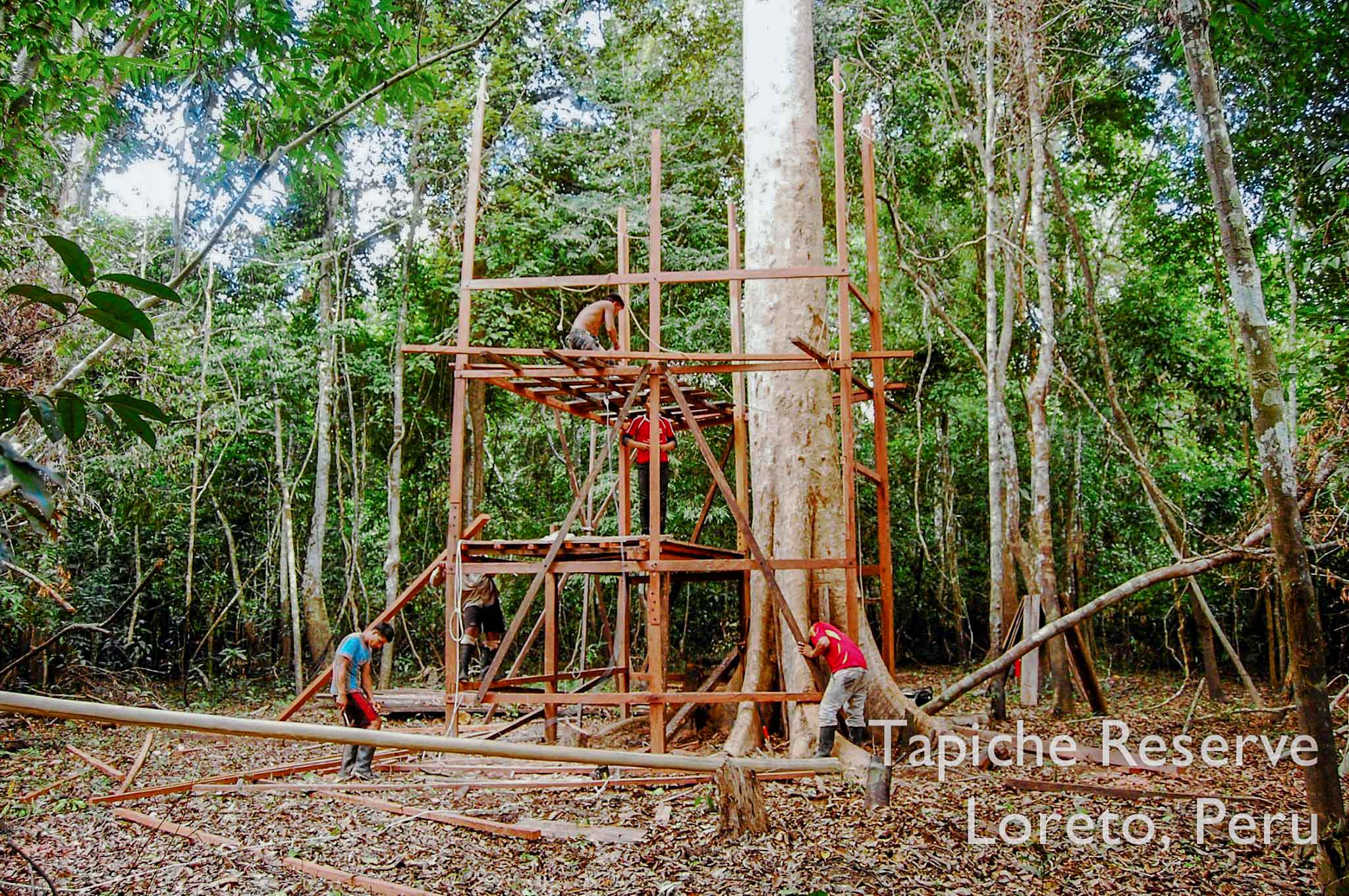 Tapiche-Amazon-Jungle-Tour-Peru-canopy-observation-tower-2.jpg