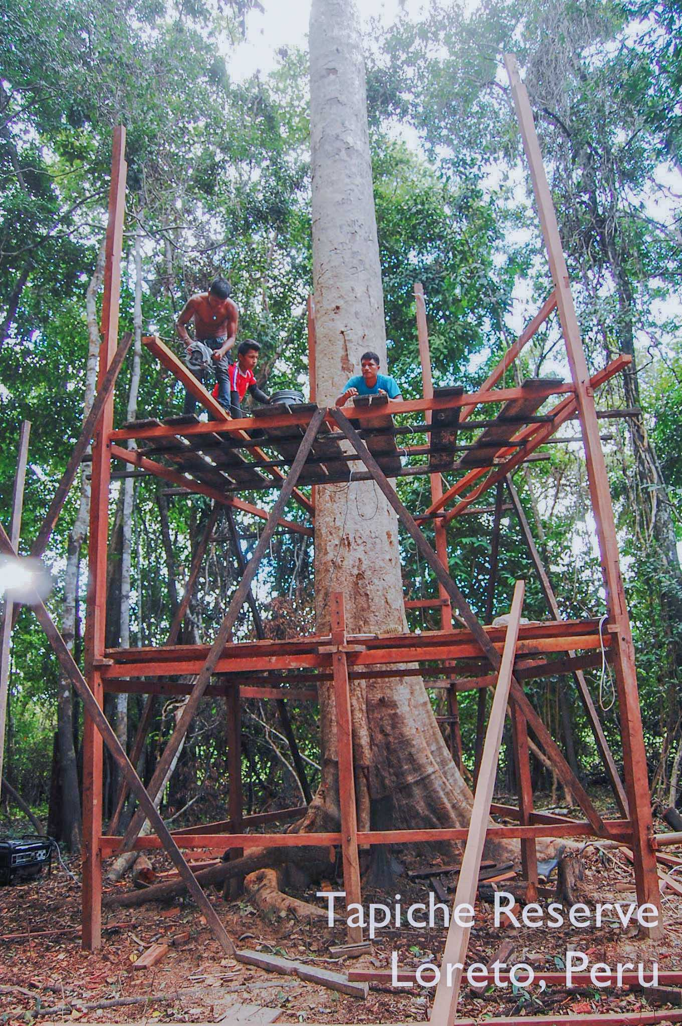 Tapiche-Amazon-Jungle-Tour-Peru-canopy-observation-tower-3.jpg