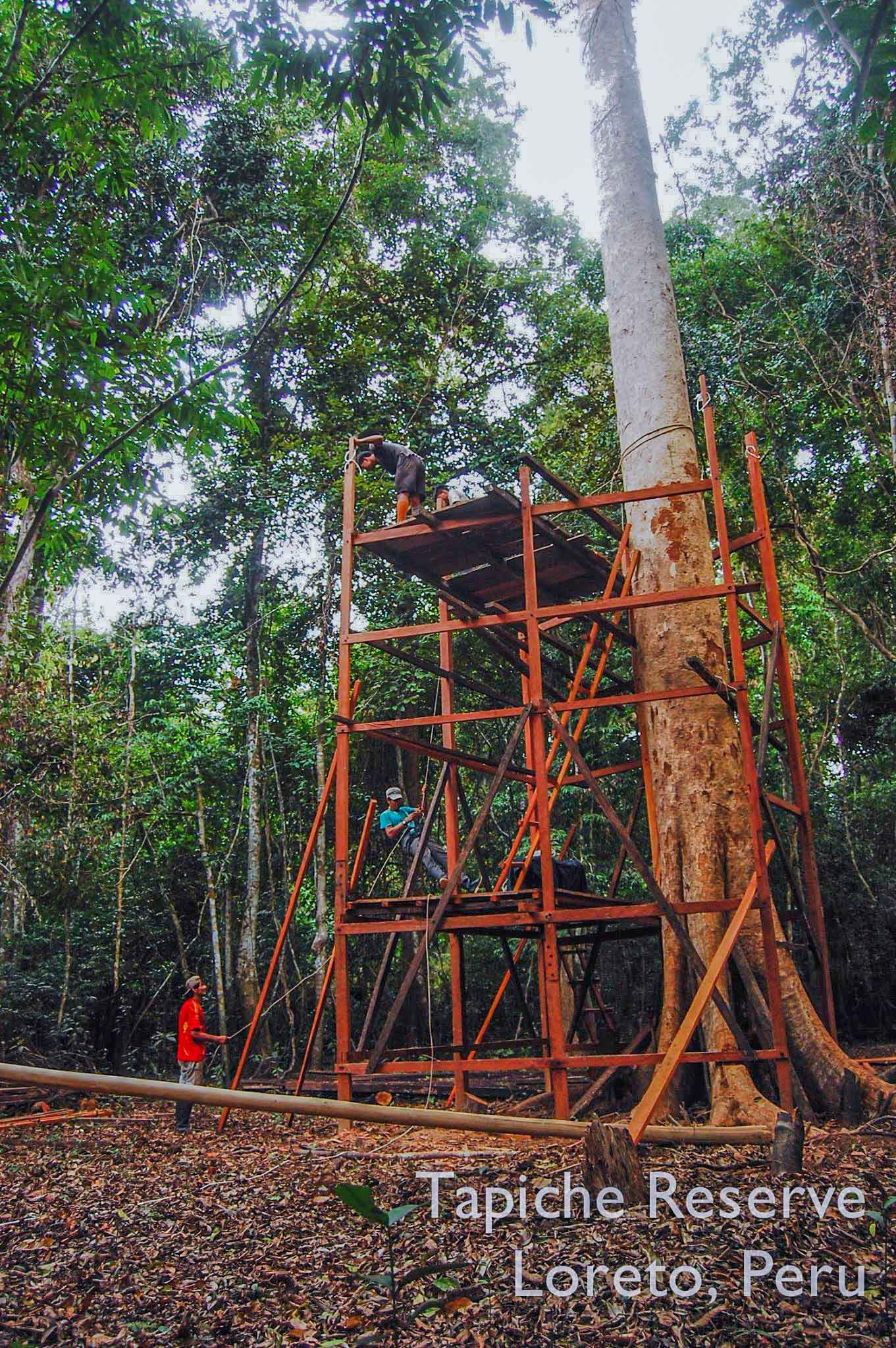 Tapiche-Amazon-Jungle-Tour-Peru-canopy-observation-tower-4.jpg