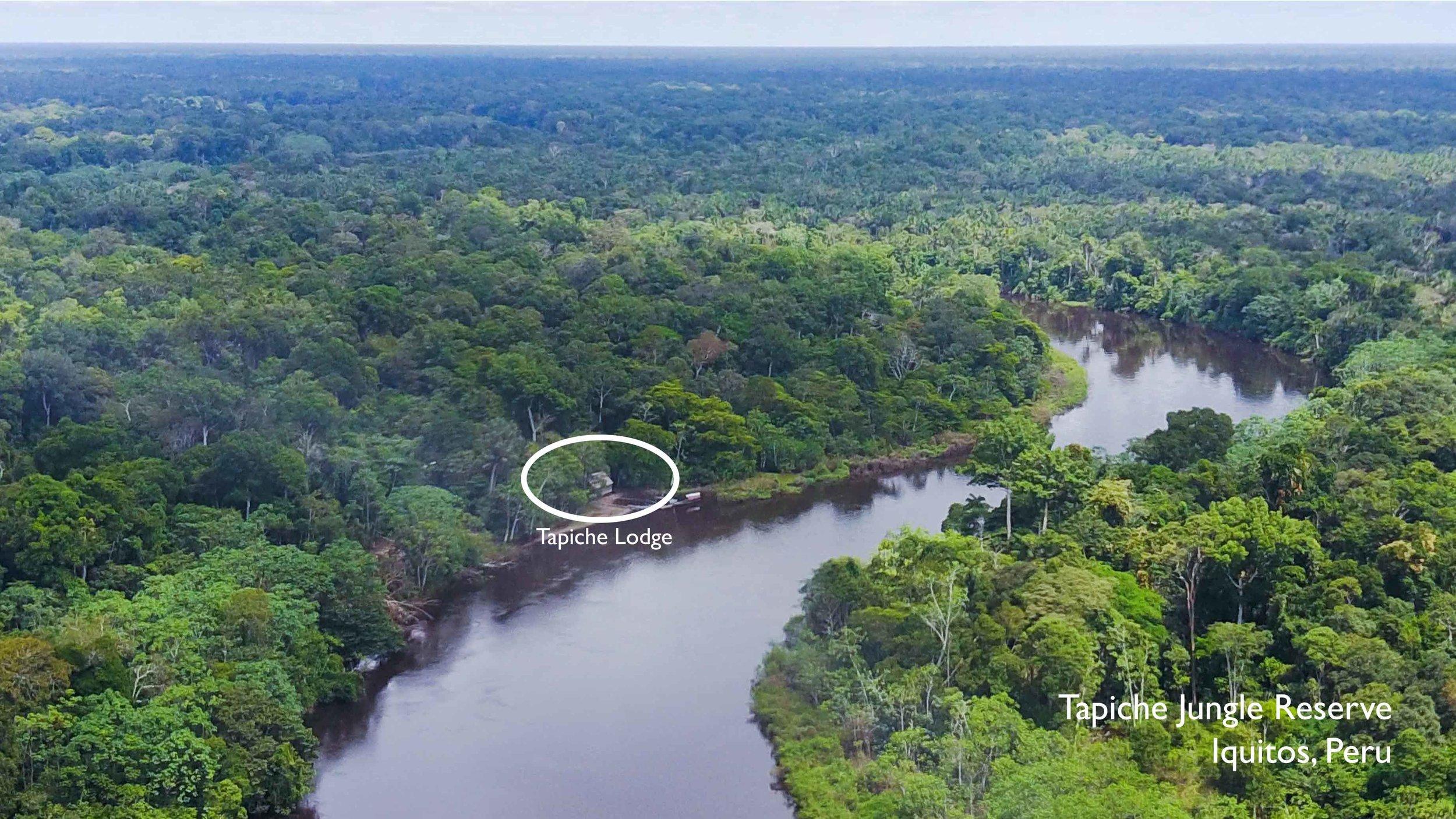 Tapiche-Amazon-Jungle-Tour-Peru-aerial-lodge-location.jpg