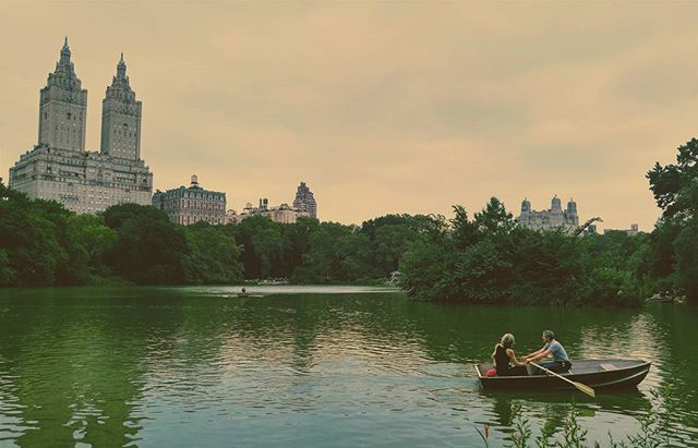 Central Park in July #nyc