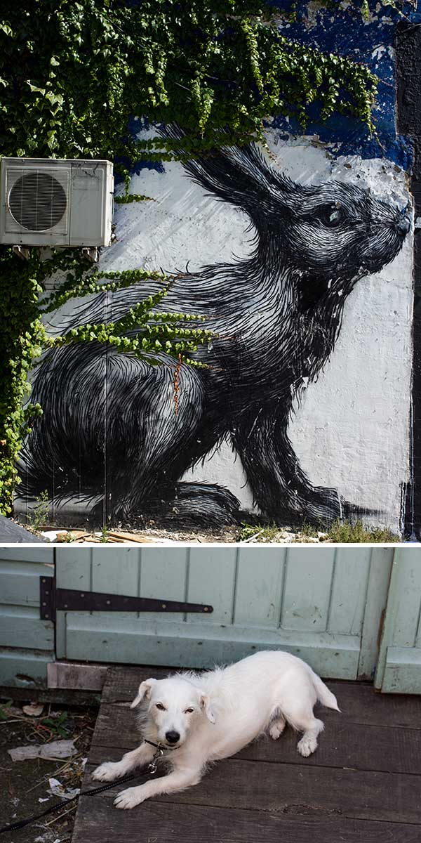 A rabbit and a pooch. Roa's awesome works can be found all over the East End, this one was actually saved from being painted over by the council and now the ivy is creeping over it's back.. love it.