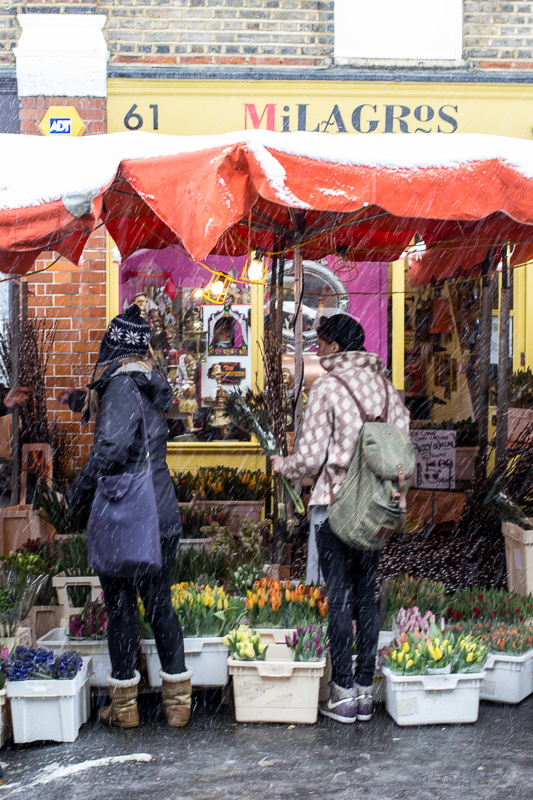 The brave flower sellers that turned up (like Carl Grover) made the most of the customers! Read more about Carl here:http://spitalfieldslife.com/2010/09/19/columbia-road-market-51/