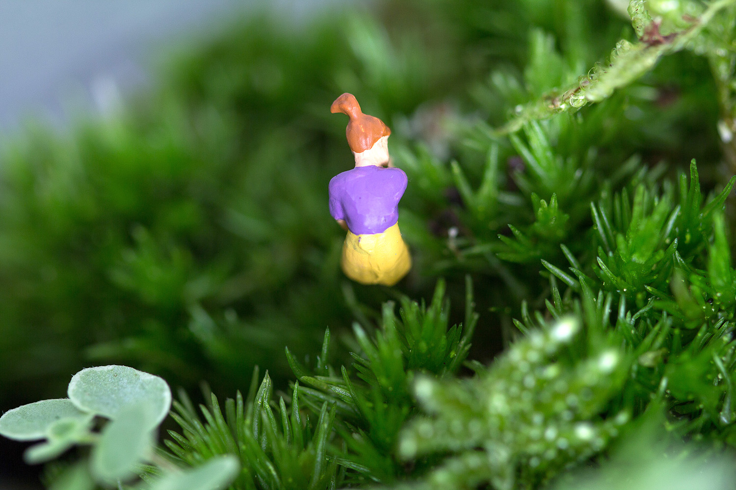 A Microworld by  Ear Gardens