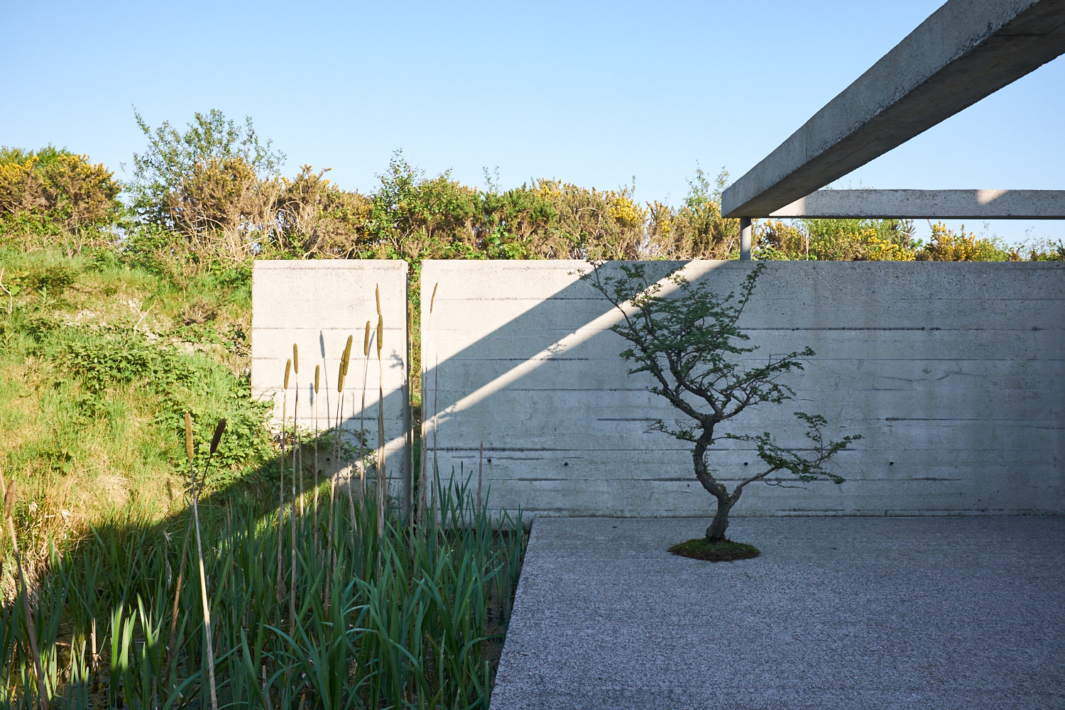 The beautiful back section of the modern cottage