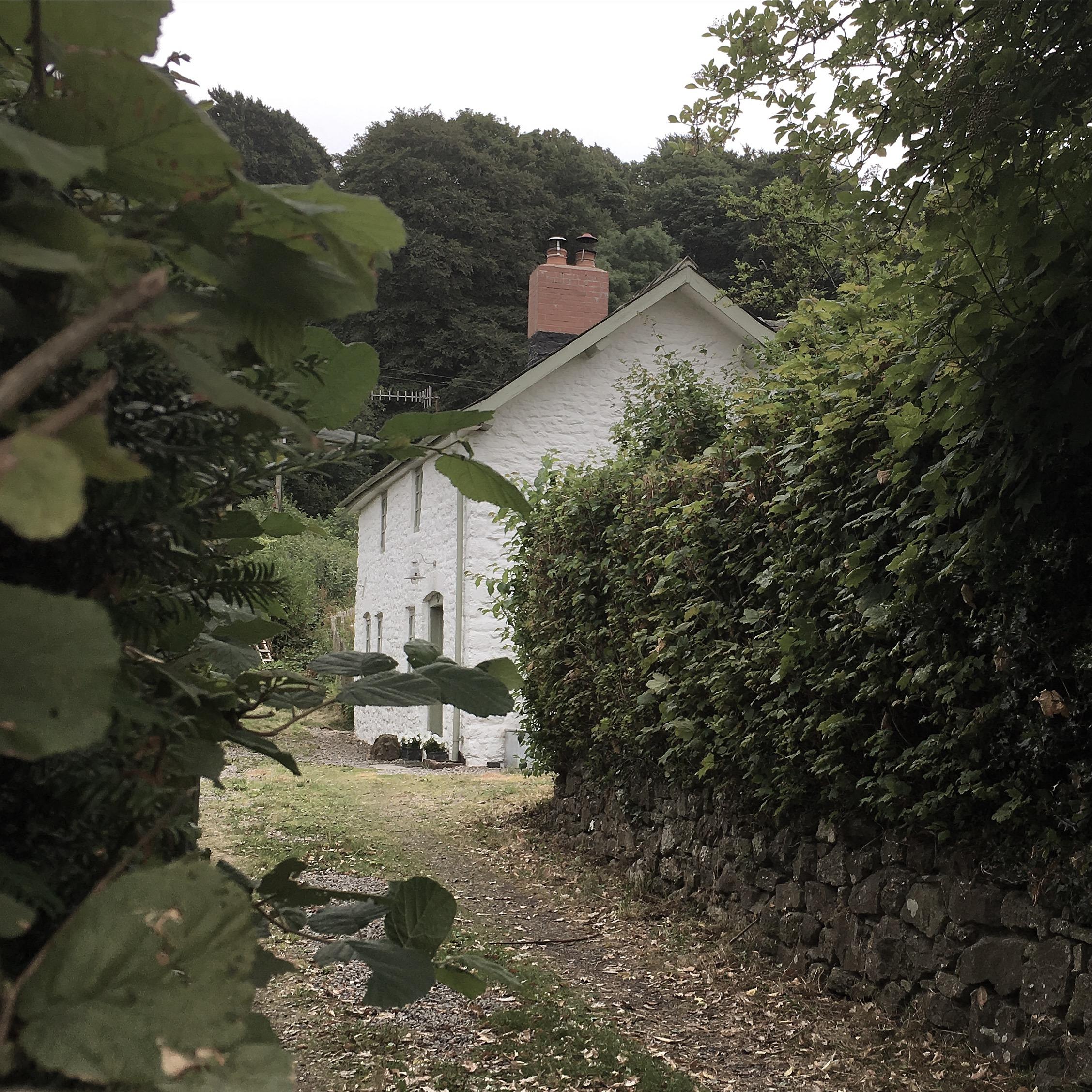 Harp Cottage 2.JPG