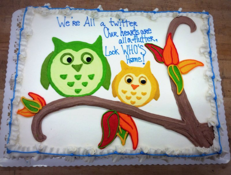 Sheet Cake with Two Owls on a Branch