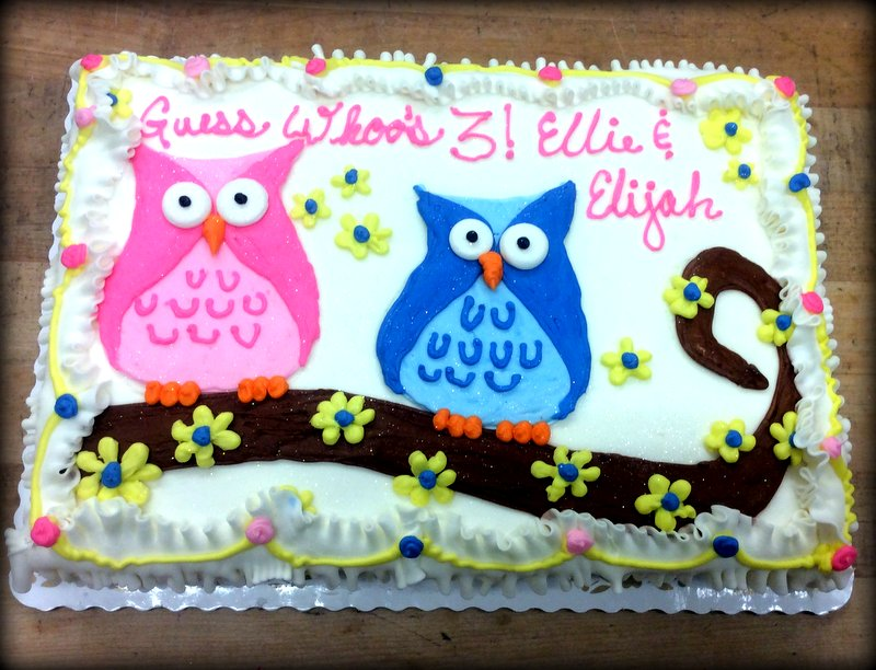Two Owls on a Branch Sheet Cake
