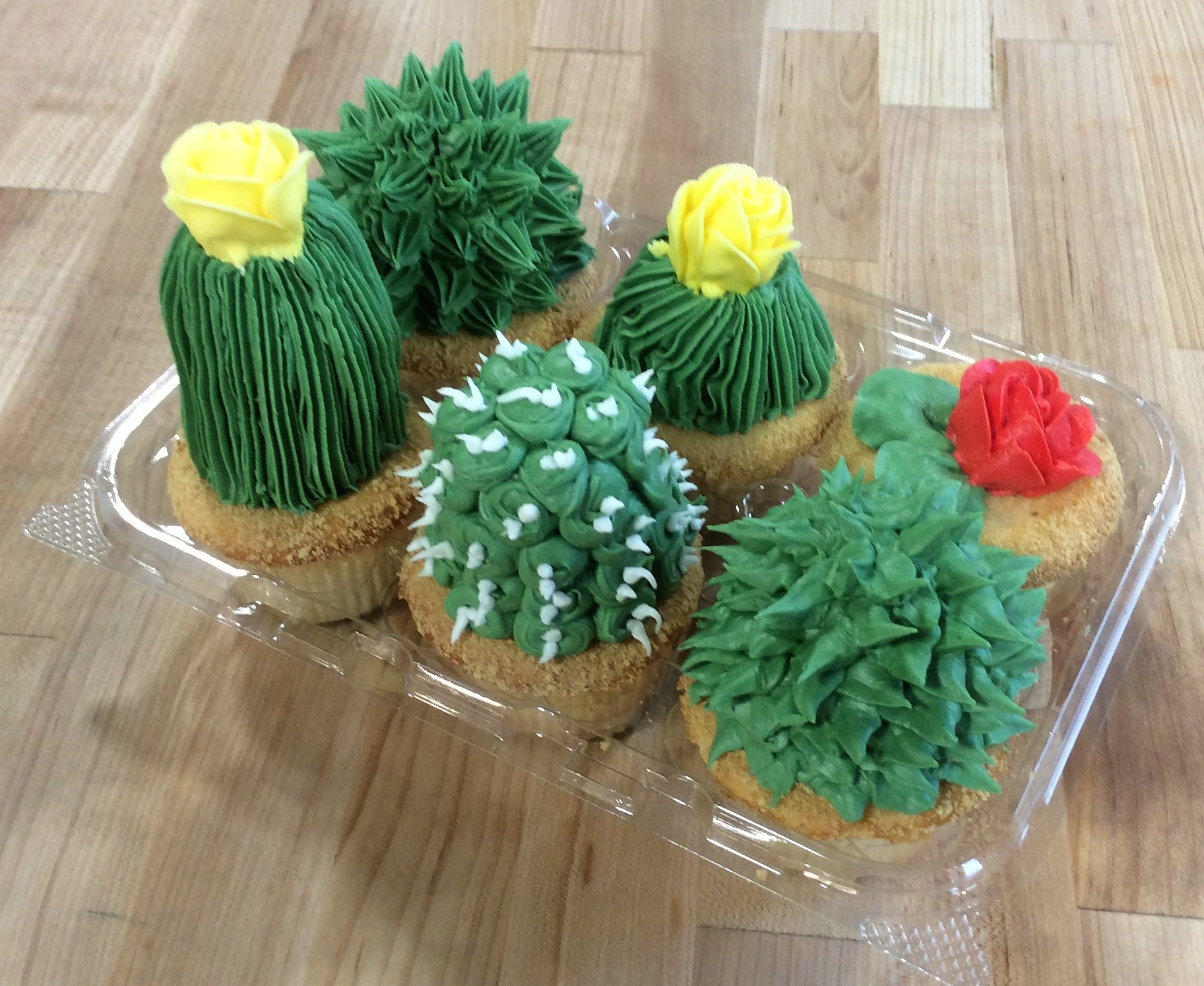 Cupcakes with Tall Cactus Decoration