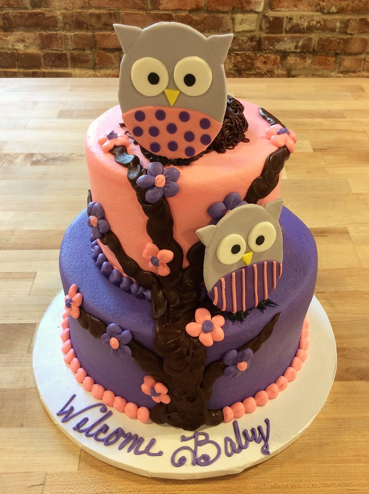 Owl Baby Shower Party Cake