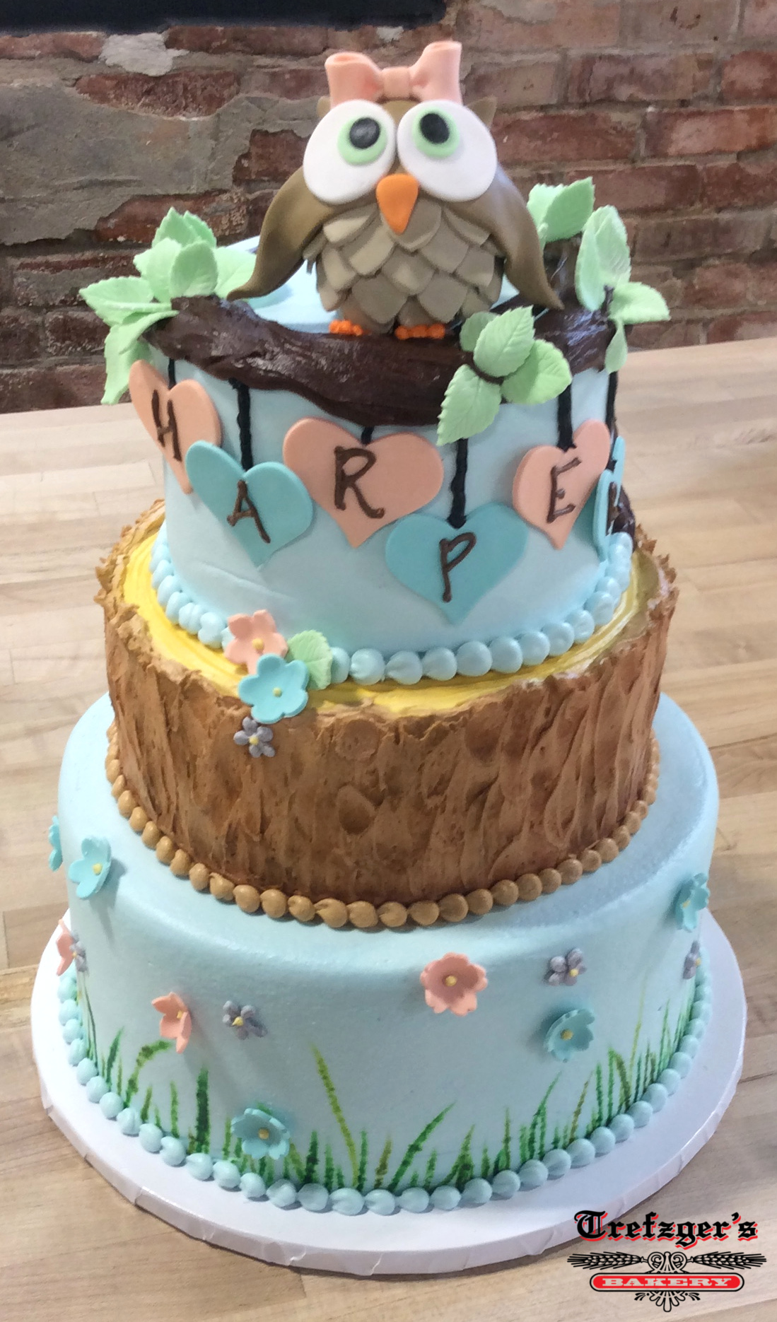 Owl Topper Party Cake