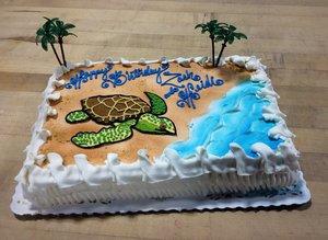 Piped Sea Turtle Sheet Cake
