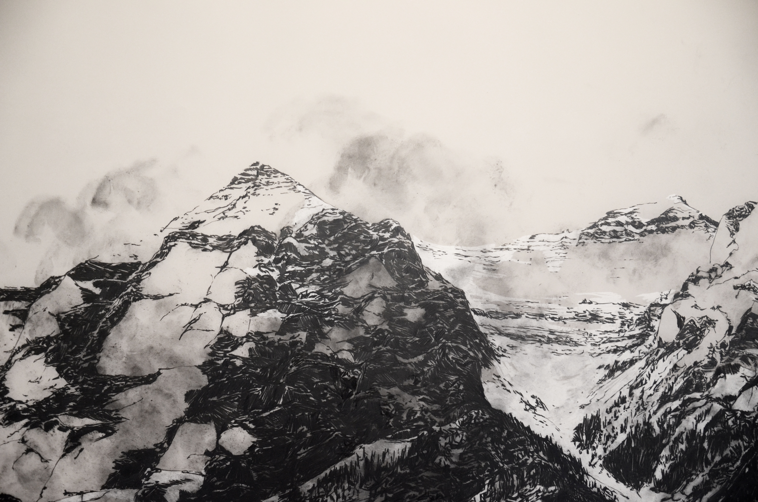 Charley Young- Mountain Details 3.jpg
