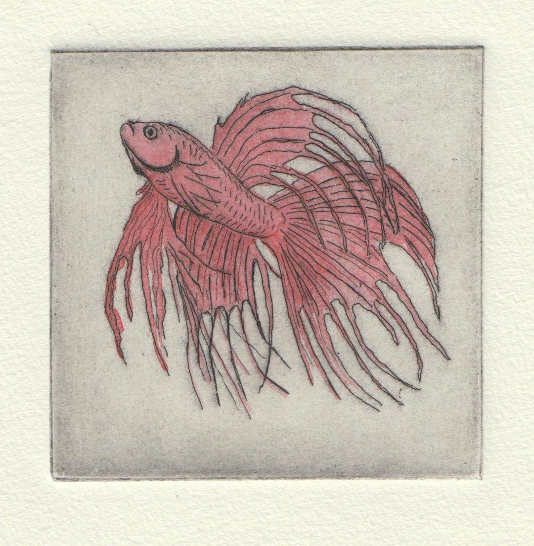 red fish.jpeg
