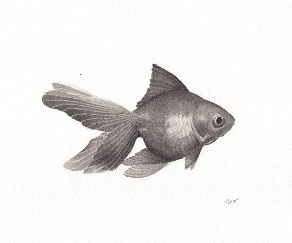Fish3 small.jpg