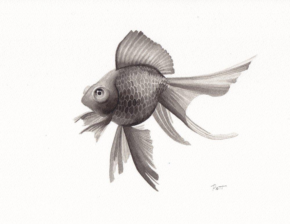 Fish4 small.jpg
