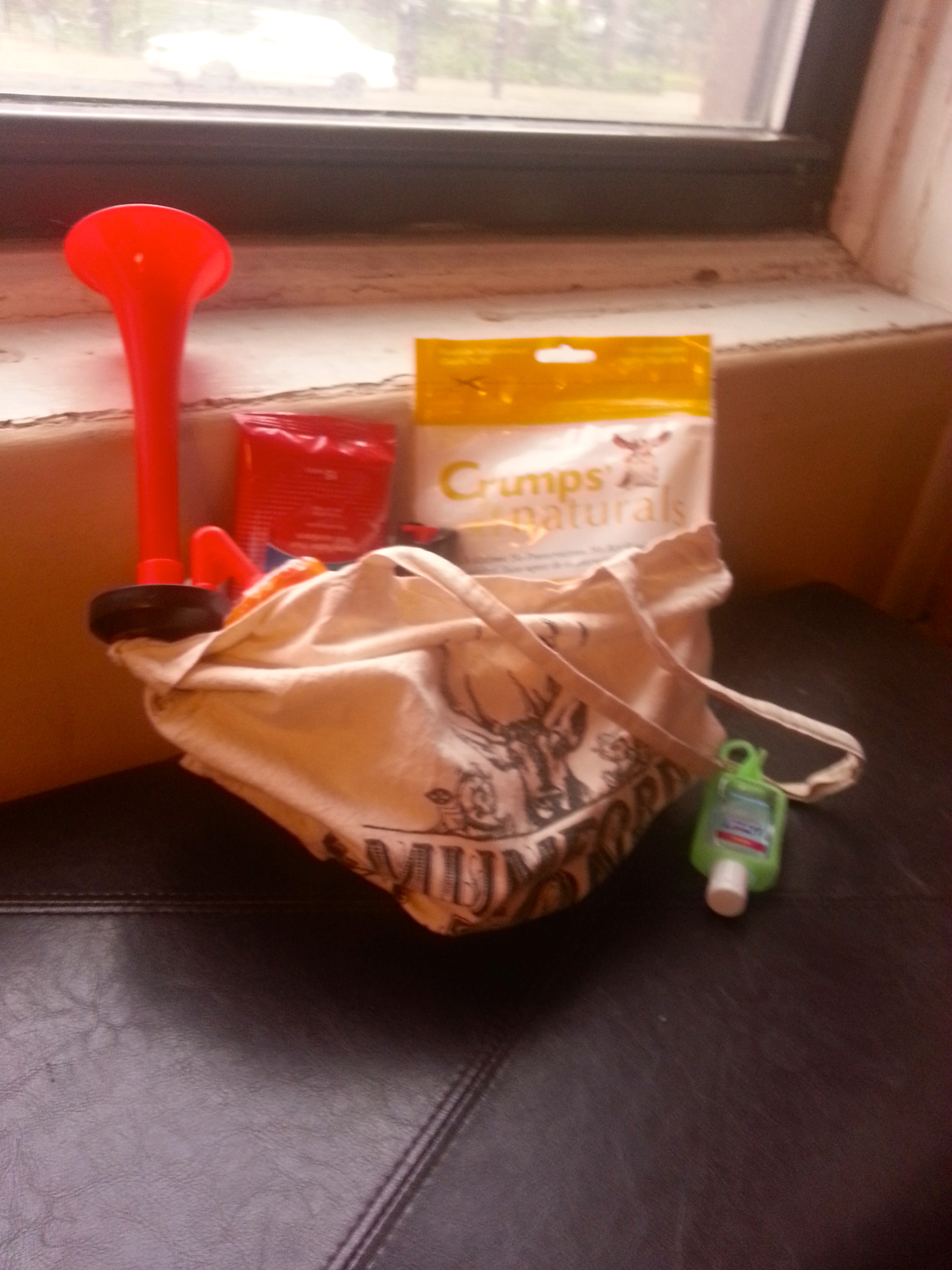 Our well worn dog walking bag we take with us when we are on the go!