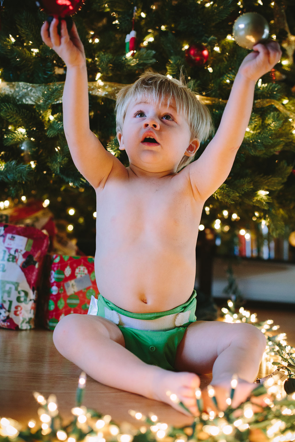 ChristmasCooper_5.jpg