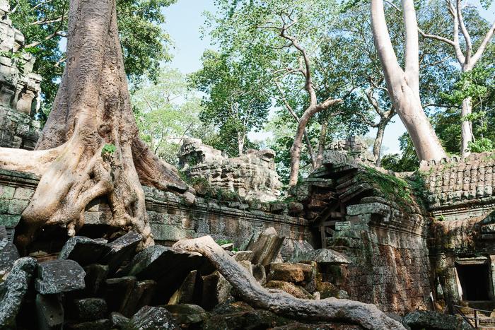 siem-reap-cambodia-0226.jpg