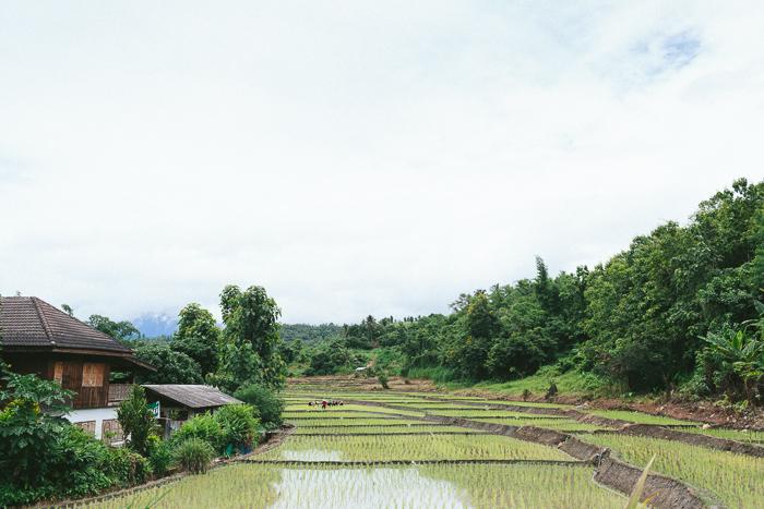 mae-hong-son-loop-thailand-0362.jpg