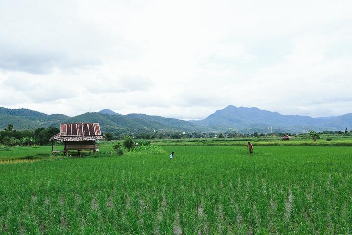 mae-hong-son-loop-thailand-0368.jpg