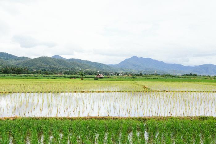 mae-hong-son-loop-thailand-0371.jpg