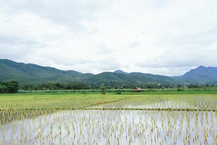 mae-hong-son-loop-thailand-0376.jpg