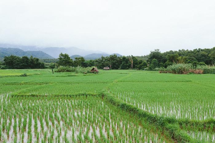mae-hong-son-loop-thailand-0380.jpg