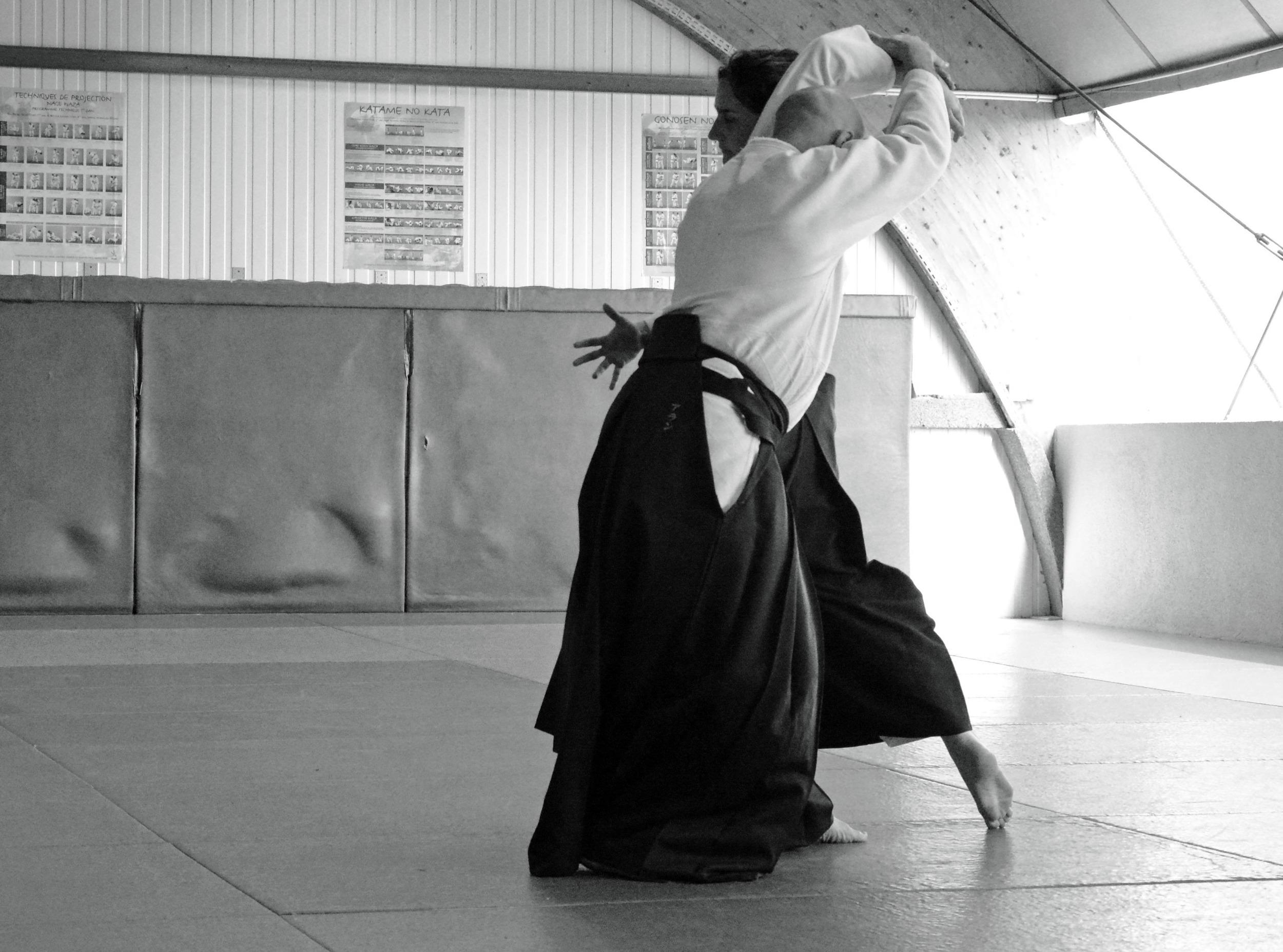 katadori shiho nage 10.jpg