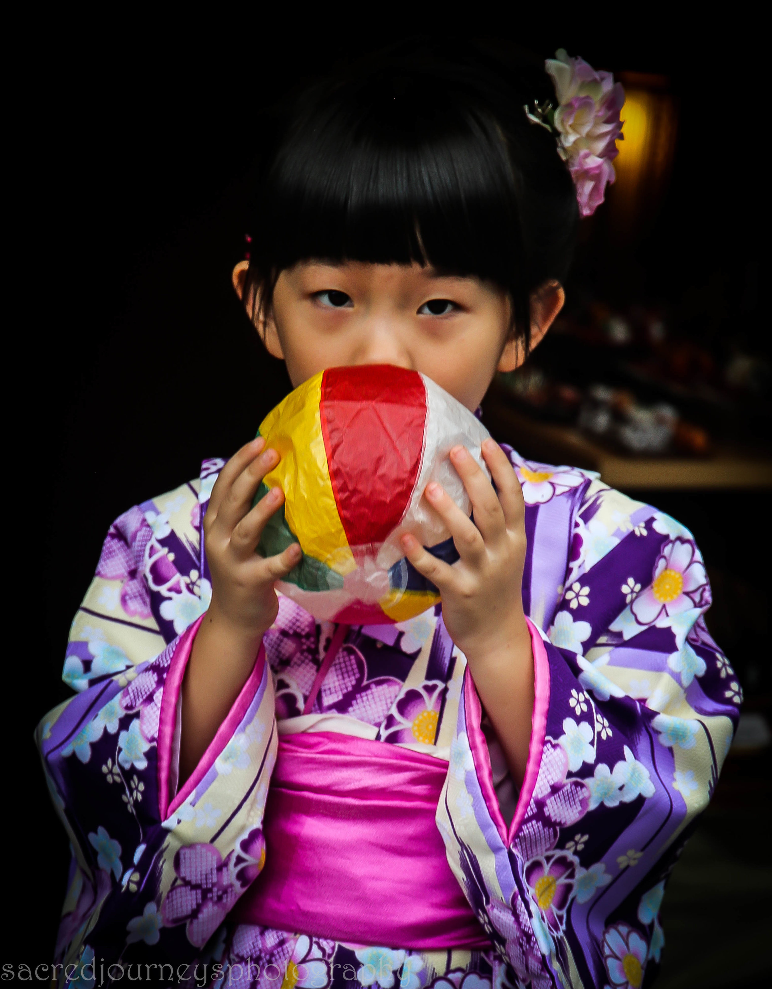 Japan October 2016 Kyoto Nirnkaar and Satdarshan 920.jpg