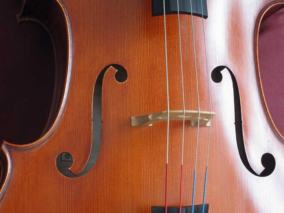 A fully varnished and polished cello, strung up