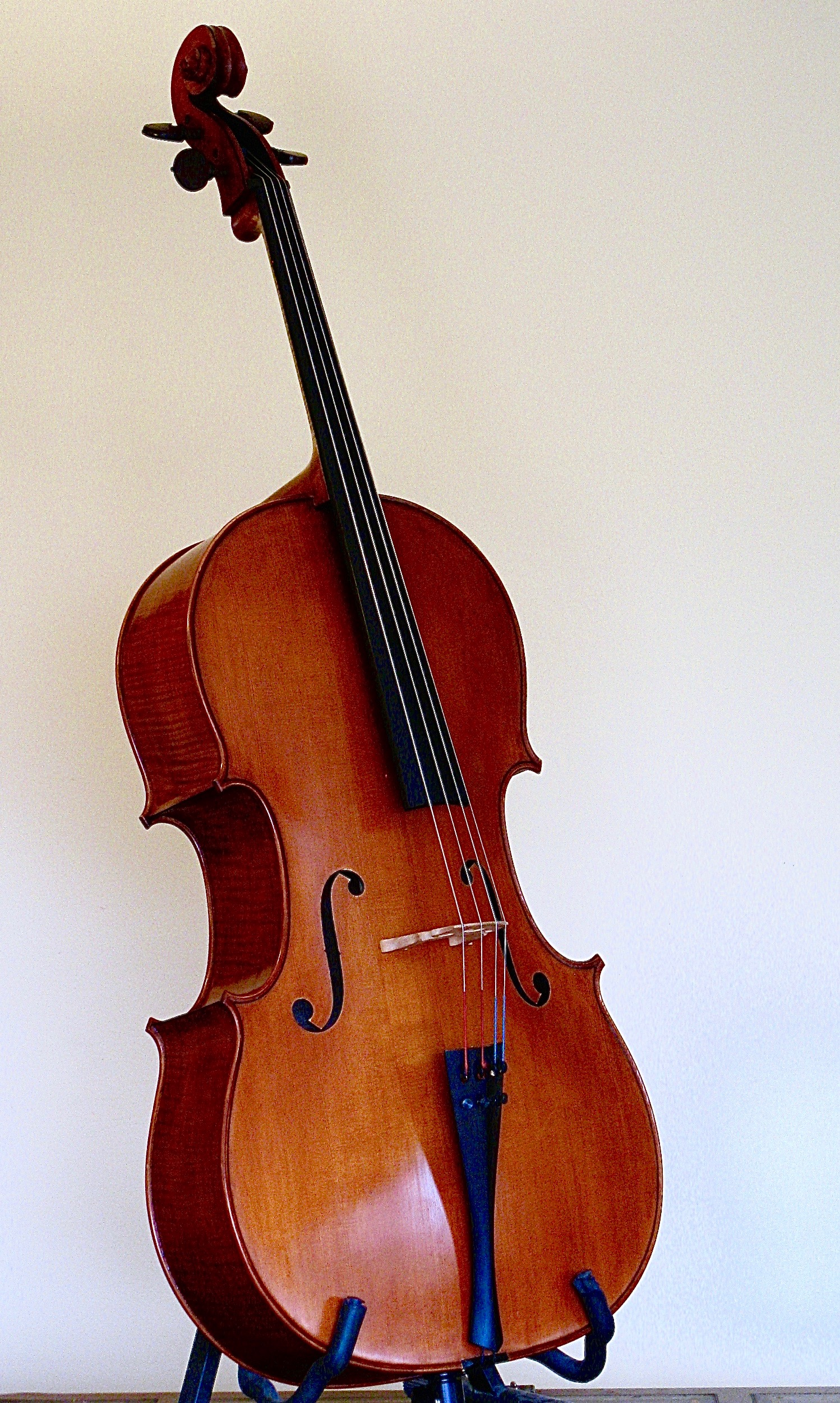Finished cello