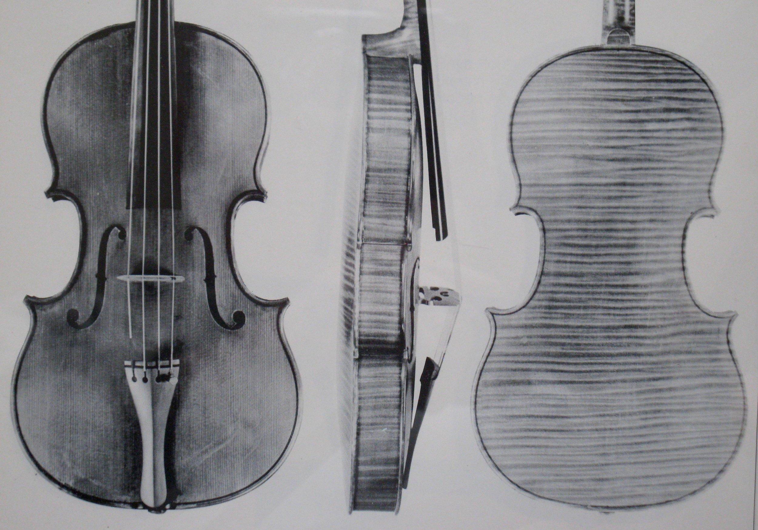 McKean viola in catalog