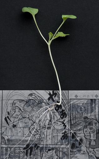 manga_farming_5.jpg