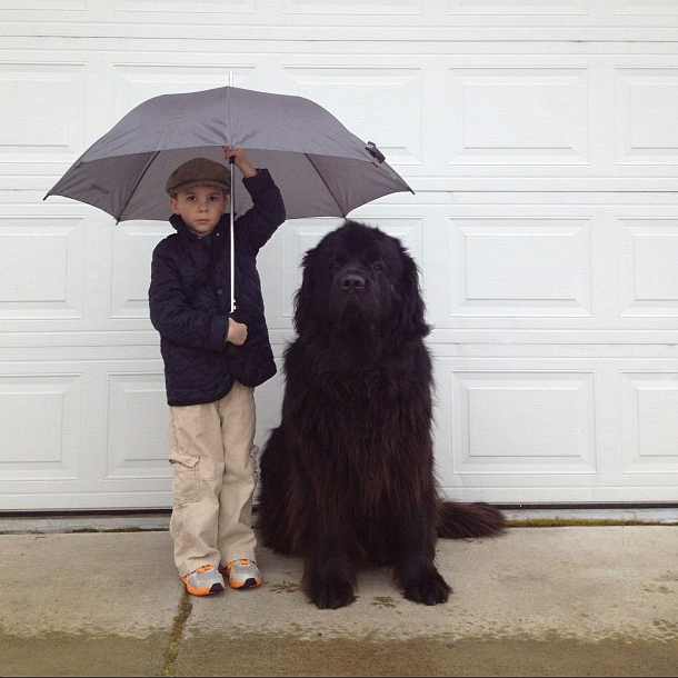 Rain is serious business!