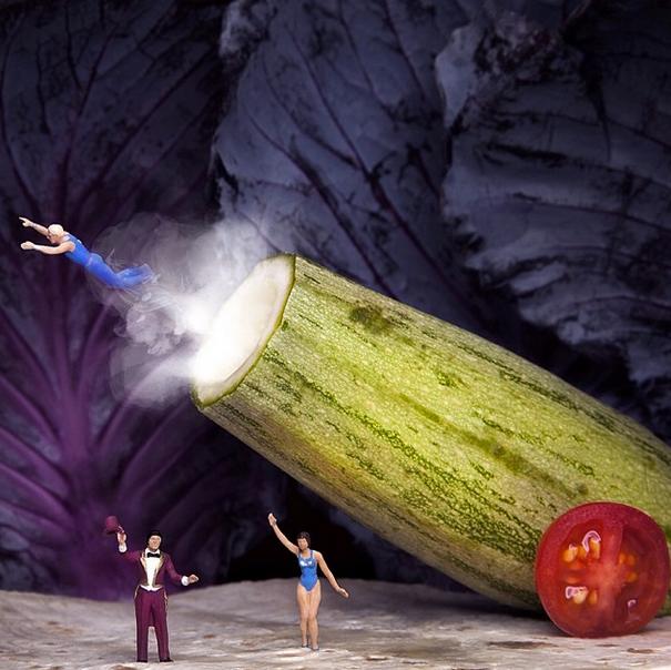 Zucchini Circus