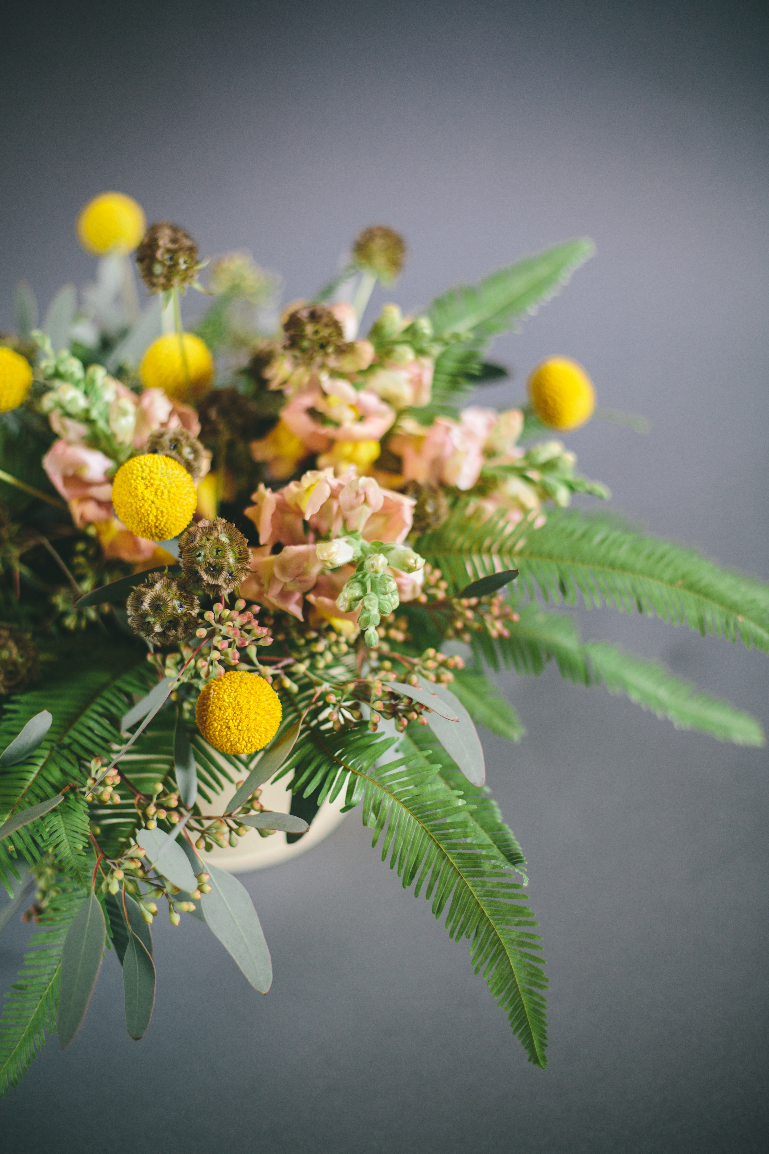 pretty_flowers-7830.jpg